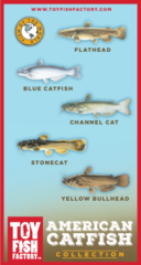 American Catfish Toy Fish Set