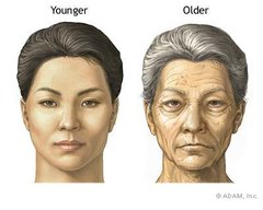 Myths of Aging - Wauwatosa, WI