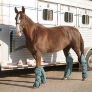 Kensington trailering boots
