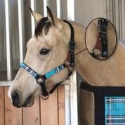 KENSINGTON HALTER WITH PADDED NOSE