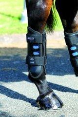 Dalmar eventer boots