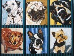 F - Dogma, Dogs Teal/Black