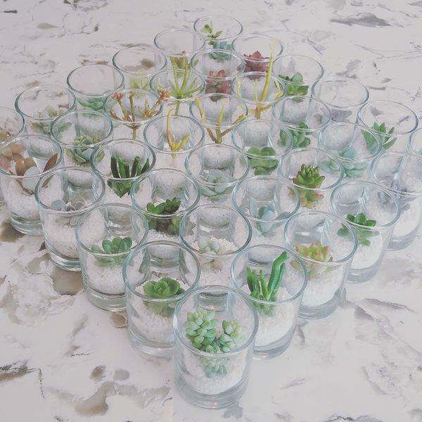 """2"""" Shot Glass Favour"""