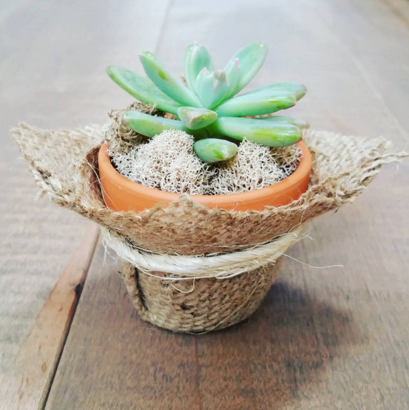 "2"" Terracotta Burlap Favour"