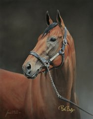American Pharoah Officially Licensed Dual Signed Limited Edition Canvas Giclee - Sold Out
