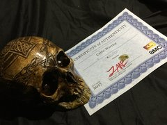 PRODUCTION USED - Celtic Warrior Skull Prop