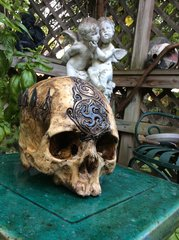SOLD - The Nomad King - Real Humans Skull Carved by Zane Wylie