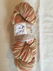 Hand Painted - Natural Dyed Worsted Weight Yarn - 240 yards per 4 oz skein