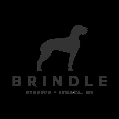 Brindle Studios
