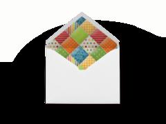 Barnyard Patch Envelope