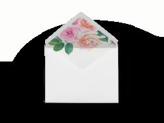 Roses Envelope