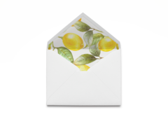 Lemon Envelope