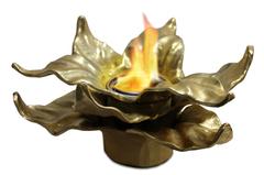 Anywhere Fireplace Heathcote