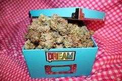Dream Maclean Dream Factory