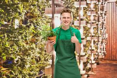 Blue Berry Puff