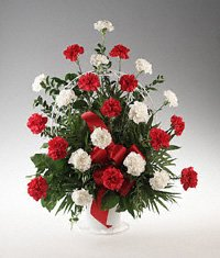 Red and White Carnation Tribute