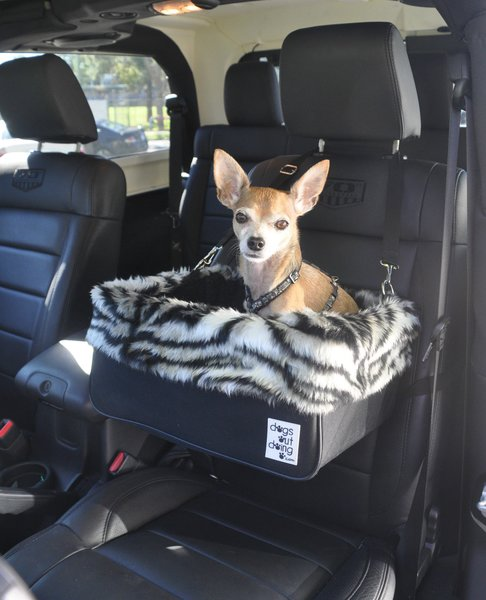 small dogs out doing car booster seat silver tiger lining dog car booster seats. Black Bedroom Furniture Sets. Home Design Ideas