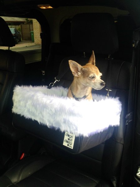 Small Dogs Out Doing Car Booster Seat - White Fox lining*   Dog Car ...