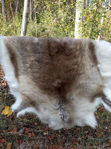 Raindeer fur hide