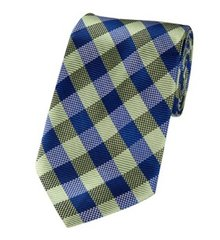 P-103 | Royal Blue and Pear Green Basket Plaid Woven Necktie