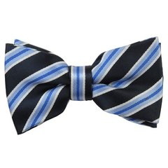 BT-25 | STEEL BLUE AND NAVY BLUE REPP STRIPED MEN'S WOVEN BOW TIE