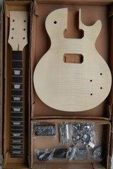 Les Paul Style Kit