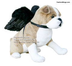 Angel of Protection, Black feather wings for Pets