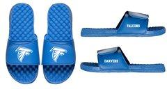 Danvers Falcons Slides