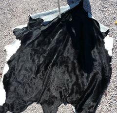 solid black and white belly cow hide
