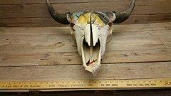 Rustic Western Style Bull Buffalo Skull / ( horse head ) PICK #12 /