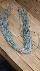 4 ft shoe lace 1/8 wide light blue