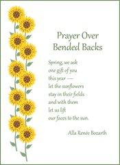 Prayer Over Bended Backs Soul Card