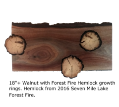 """18"""" Charcuterie Board in Walnut with Forest Fire Growth Rings"""
