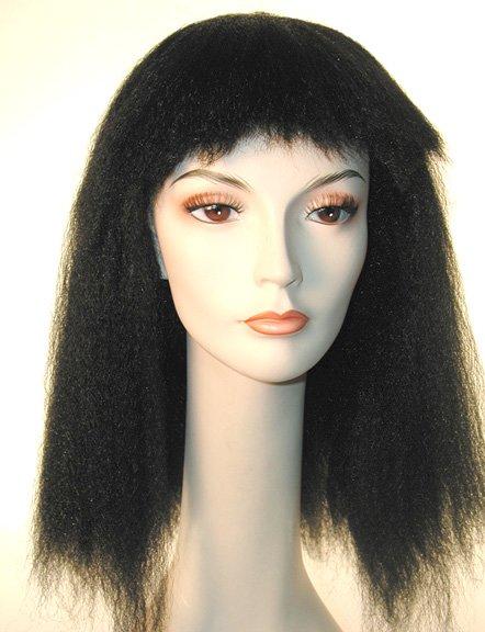 Diana Ross Wig (Item#:l-dianaross)