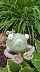 Frog diving