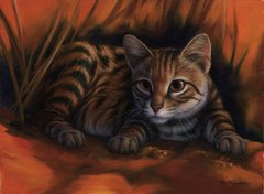 "Black-footed cat 9 x 12"" Signed and Numbered giclée on canvas"