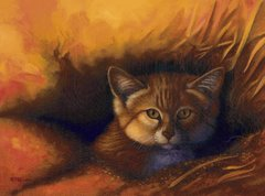 """Sand cat 9 x 12"""" Signed and Numbered giclée on canvas"""