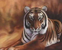 "Tiger 24 x 30"" Signed and Numbered giclée on canvas"