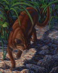 Bornean bay cat Original oil painting on linen 20 x 16""