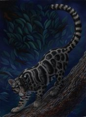 "Clouded leopard 30 x 22"" Signed and Numbered giclée on canvas"