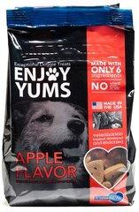 Little Pet Vet Dog Treats Apple 1 lb.