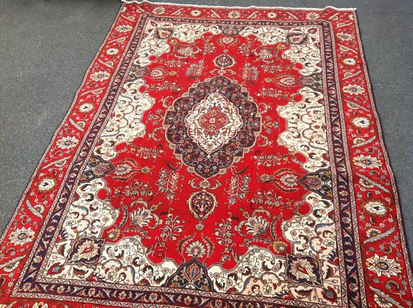 Persian Style Hand Knotted Wool Area Rug