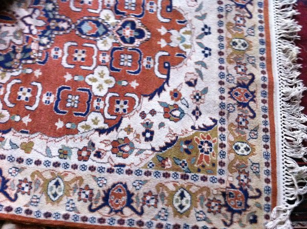 Persian Hand Knotted Fine Wool Rug 4 x 6