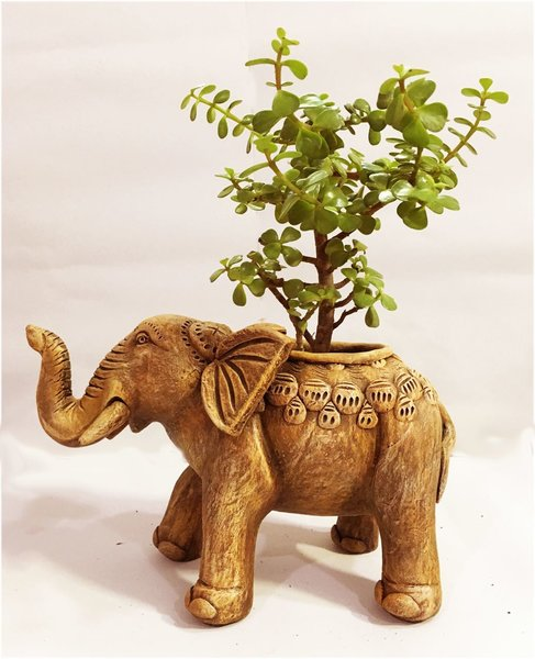 Handmade Elephant Terracotta Planter Pot Happypick