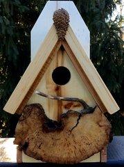 Birdhouse #11