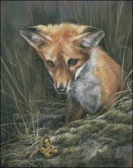 Fox Kit with Butterfly