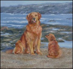 By the Sea (dogs)