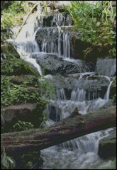 Cascading Waterfalll