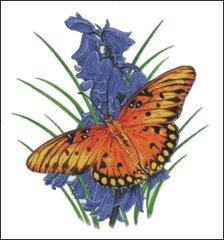 Brilliant Eye Jewel Butterfly
