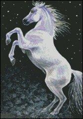 Starlight Horse Rearing